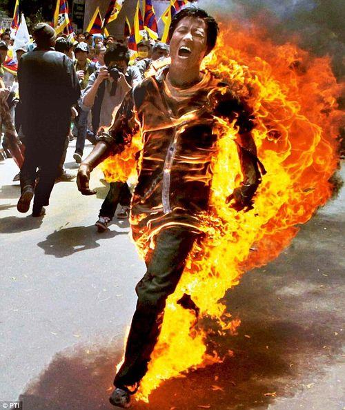 TibetanProtester