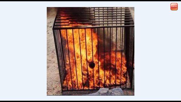 Moaz al-Kasasbeh completely engulfed in flames.