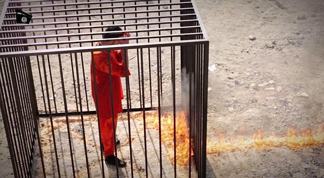 Trail of flame entering cage holding Moaz al-Kasasbeh.