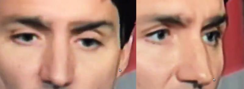 Justin-Trudeau-eyebrow-malfunction