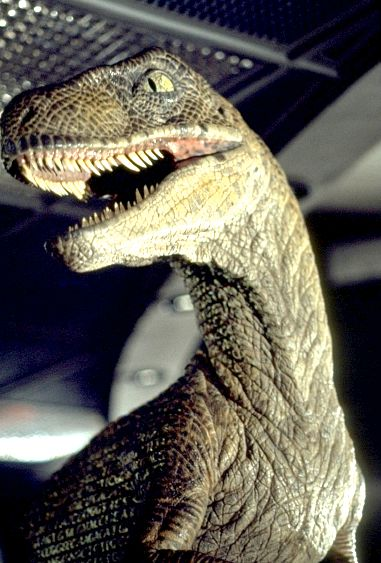 Lego Jurassic Park Topic Jurassic_park_raptor